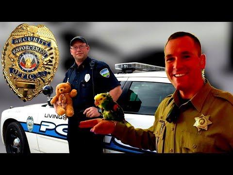 Какие ГАИшники в США, дорожная полиция США, факты о ней