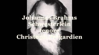 Brahms Johannes, Schwesterlein   (tenore Christoph Prégardien)