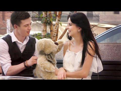 Говорящий Медведь 2 Пранк
