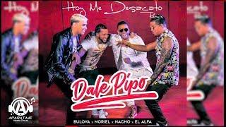 Bulova, Noriel, Nacho, El Alfa - HOY ME DESACATO | DALE PIPO (Remix)