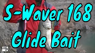 How to Fish the River 2 Sea S-Waver 168 Swimbait in Cold Water. (Winter)