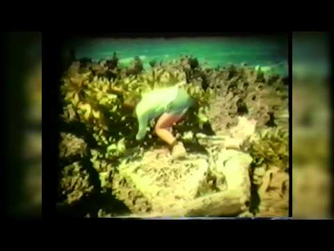 Christmas Island Indian Ocean (77) - Old 8 mm Film Documentary...