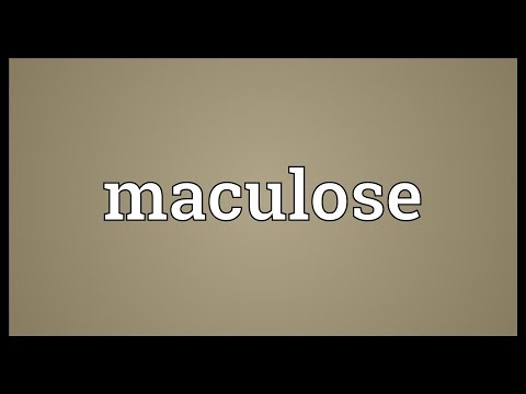 Header of Maculose