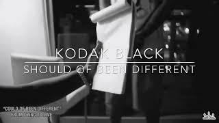 Kodak Black x Drake x Trippie Redd Type Beat x Should Of Been Different  (Prod. By @1Bosa)