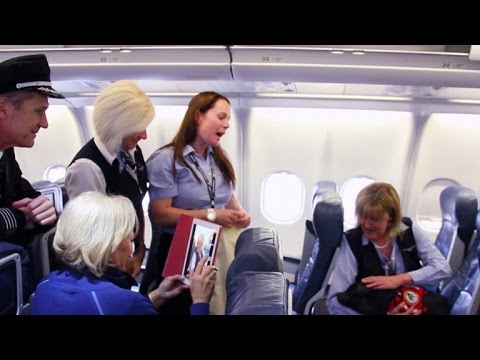 Passengers abuse rules to bring animals on planes