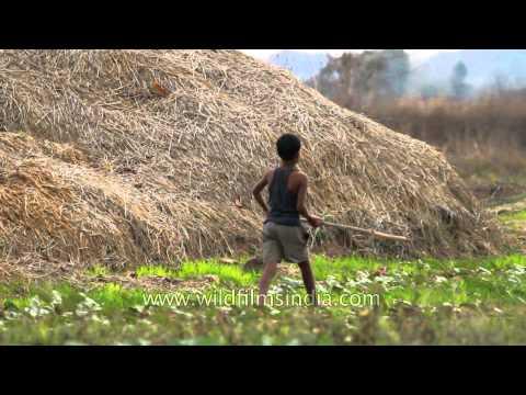 Glimpse of Gondi tribal people in Madhya Pradesh