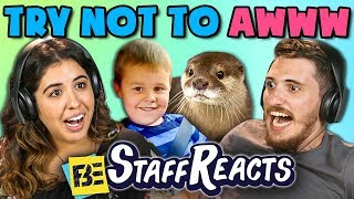 TRY NOT TO AWWW CHALLENGE #2 (ft. FBE Staff)