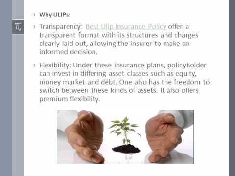 Best Ulip Insurance Policy