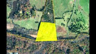 For Sale Wooded Land in Louisa County, 11.72 Acres with Creek Frontage!