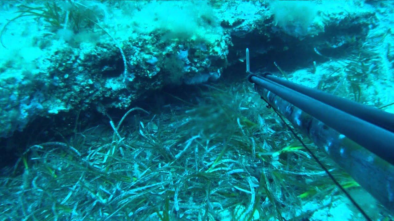Debajo del agua 1 - 3 2