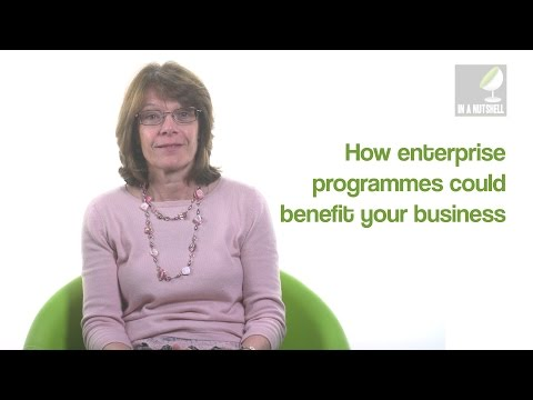 How enterprise programmes could benefit your business - In a nutshell