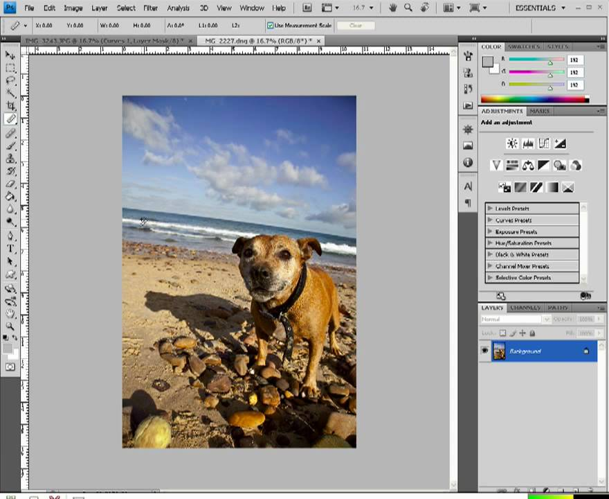 how to add ruler on photoshop