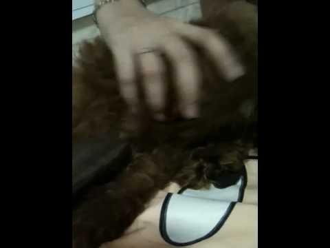 Massage For Money video