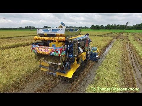 รถเกี่ยวข้าวเกษตรพัฒนา ไอ้หนุ่มไวไฟ EP.2 All New Pro