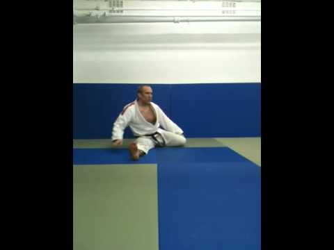 Brazilian Jiu Jitsu Flexibility & Stretching Training Image 1