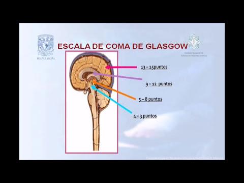 Escala de Coma de Glasgow en Traumatismo Craneoencefálico