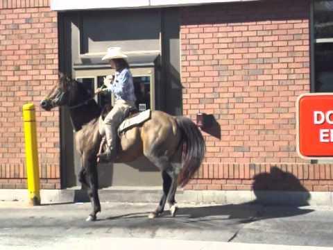 Horse ride through the Tim Horton's Drive Through