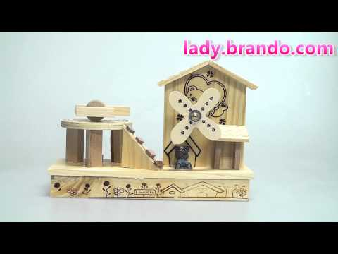 Woody Bear House Music Box
