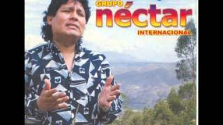 Grupo nectar - Internacional - Crees tu