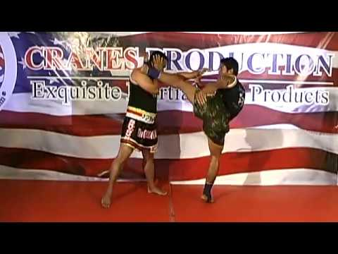 MUAY THAI Kicks & Knees DVD from World Champion (i) Image 1