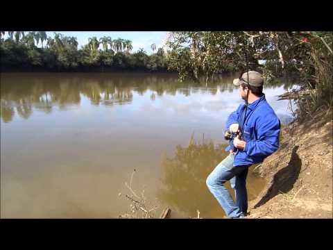 Pescaria De Carpa No Rio Iguaçu