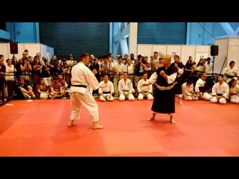 Shorinji Kempo- Japanese Martial Arts- Hyper japan 2013