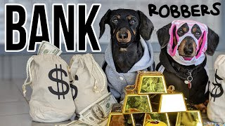 Ep #8: Crusoe & Oakley ROB A BANK! - a Wiener Dog Bank Heist!