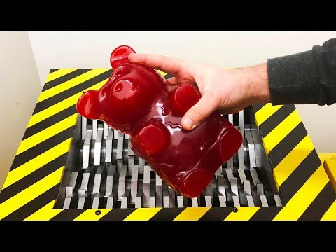 Download EXPERIMENT Shredding GIANT GUMMY BEAR Five pound Mp4 baru