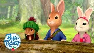 download musica Peter Rabbit - The Way the Woods Work Cartoons for Kids