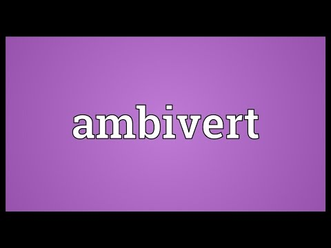 Header of ambivert
