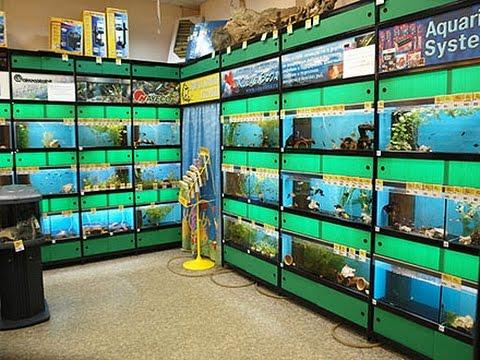 немецкий магазин рыболовных товаров