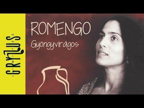 Romengo - Gyöngyvirágos (Nagyecsed - Budapest)