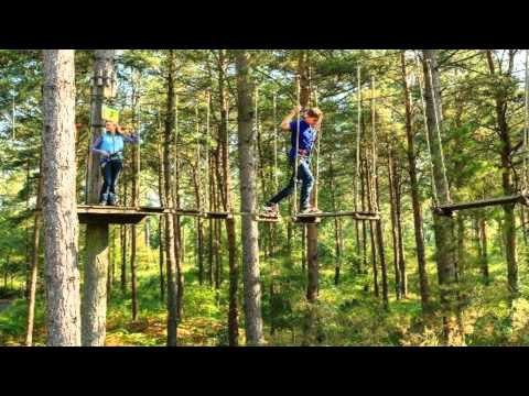 Go Ape at Black Park Uxbridge Northolt Greater London