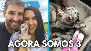 ADOTAMOS UM CACHORRO | Travel and Share