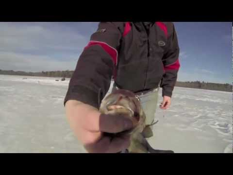 Best of Ice Fishing 2012/2013