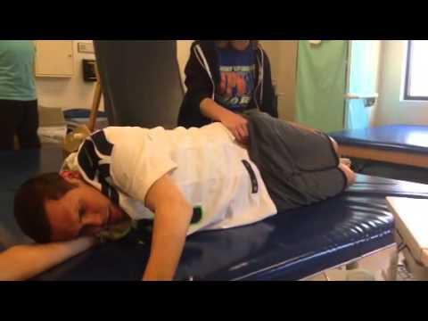 Quadriceps Muscle Muscle Testing Quadriceps