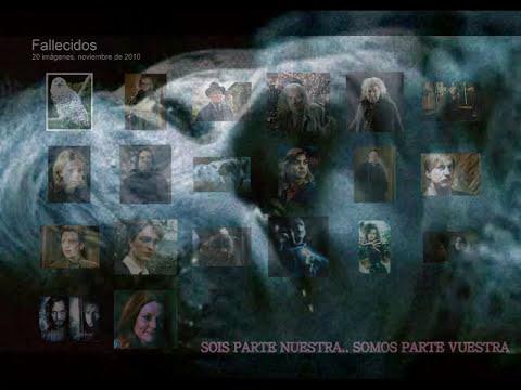 Homenaje a los fallecidos. Harry Potter