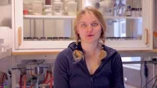 Jennifer Andersson - Industriell miljö  och processteknik