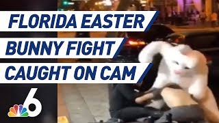 Person In Easter Bunny Costume Throws Punches During Orlando Fight | NBC 6