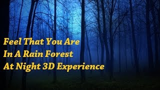 Feel That You Are In A Rain Forest At Night 8 Minute Rain Forest 3D Experience