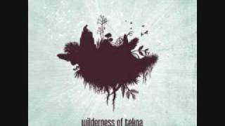 Watch Wilderness Of Tekoa Your Place In The Ground video