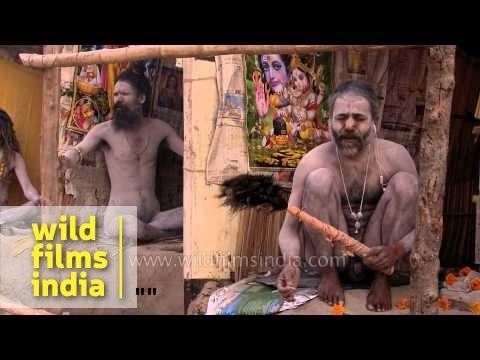 Naga sadhus perform strange naked rituals at Gangasagar Mela
