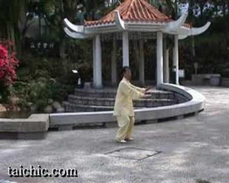 Learn Tai Chi Video