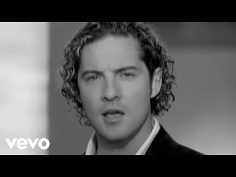 David Bisbal - Mi Princesa Music Videos