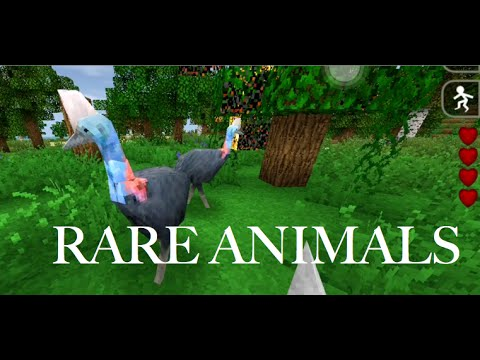 Most Dangerous Bird - Rare Animlas [SurvivalCraft]