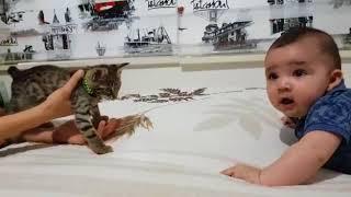 İlk Defa Kedi Gören Sevimli Bebek