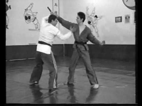 programme technique de sambo defense Image 1