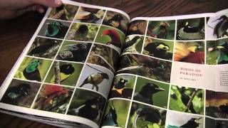 ASMR Magazine Whisper (flipping through a National Geographic issue)