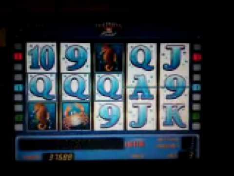 free play online casino  spiele für pc