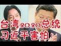 台灣2020新總統身份曝光、習近平感到害怕!